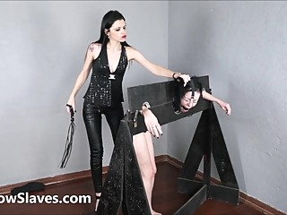 Lezdom punishment of nosehooked and whipped Brasilian slave girl Tara in bondage bdsm brazilian femdom